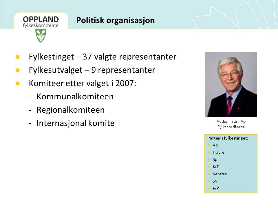 Politisk organisasjon