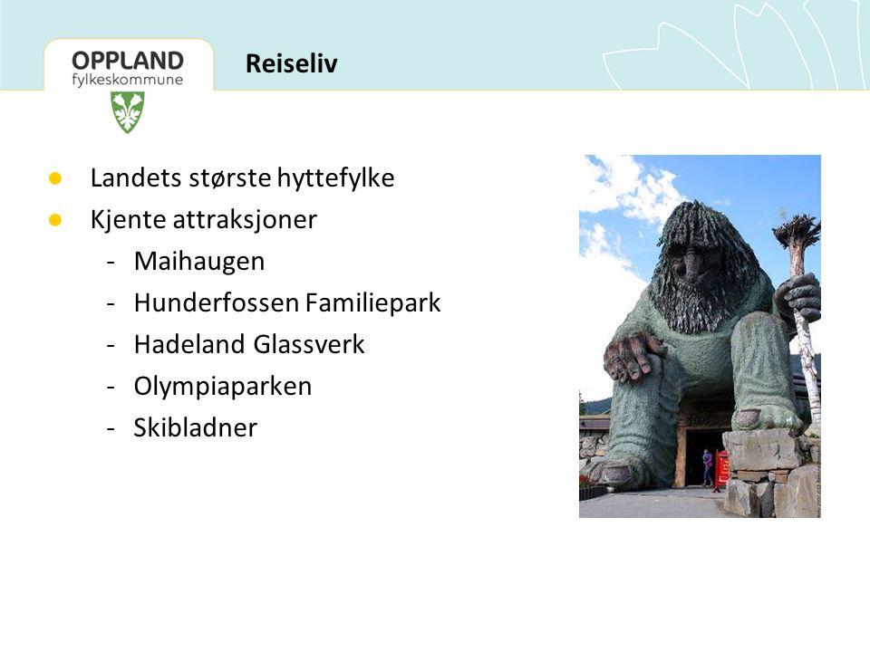 Landets største hyttefylke Kjente attraksjoner - Maihaugen