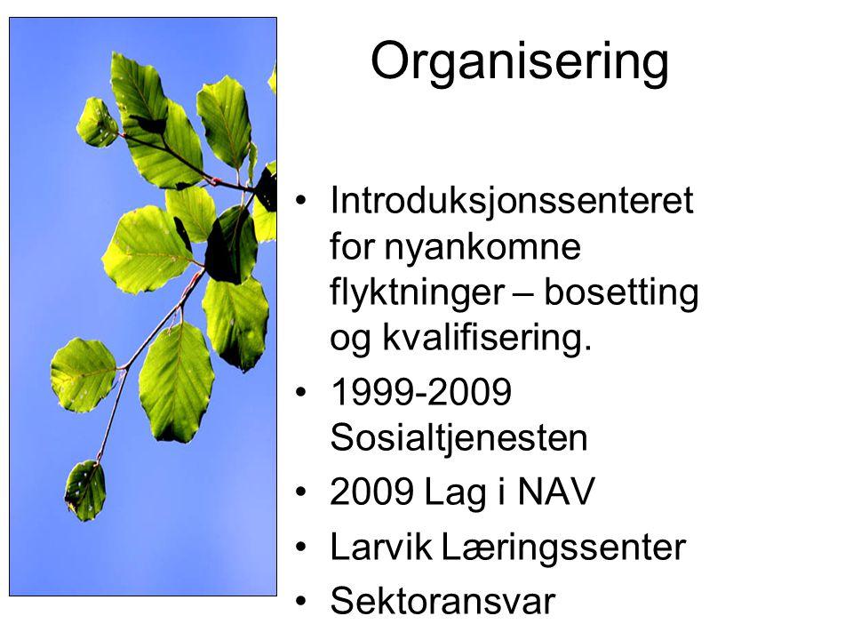 Organisering Introduksjonssenteret for nyankomne flyktninger – bosetting og kvalifisering. 1999-2009 Sosialtjenesten.