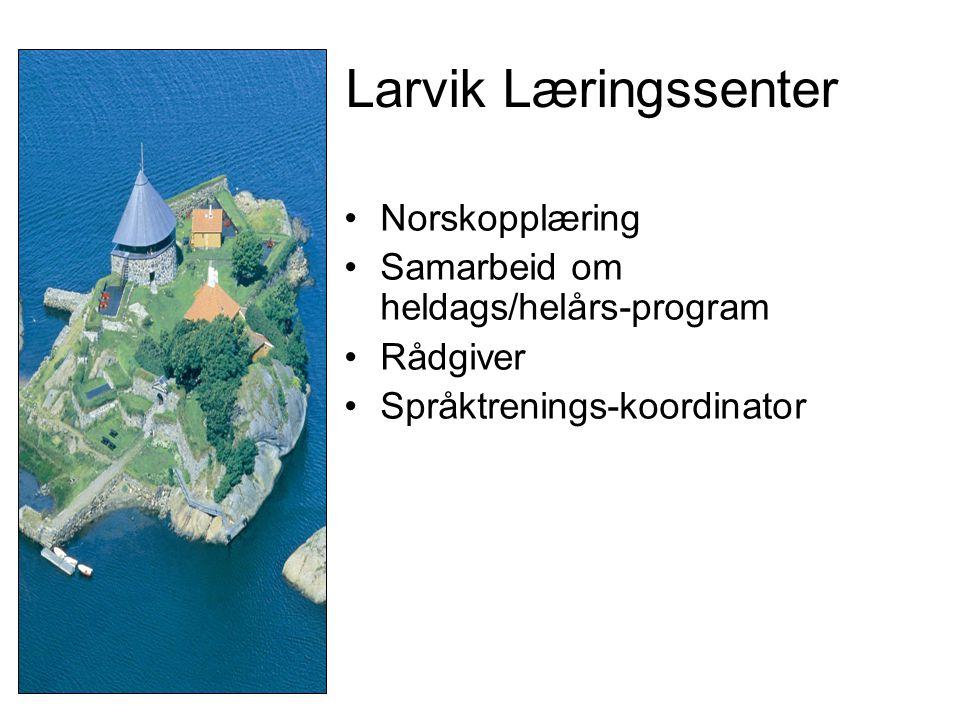 Larvik Læringssenter Norskopplæring