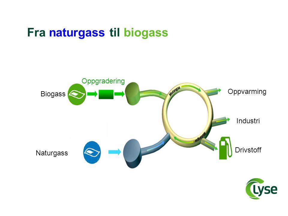 Fra naturgass til biogass