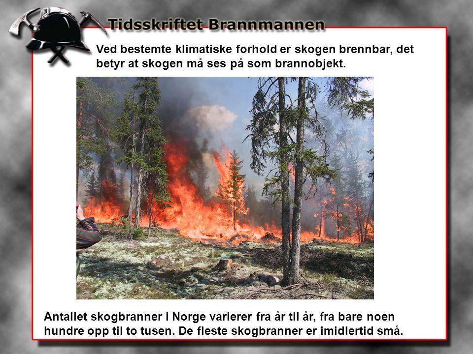 Ved bestemte klimatiske forhold er skogen brennbar, det betyr at skogen må ses på som brannobjekt.