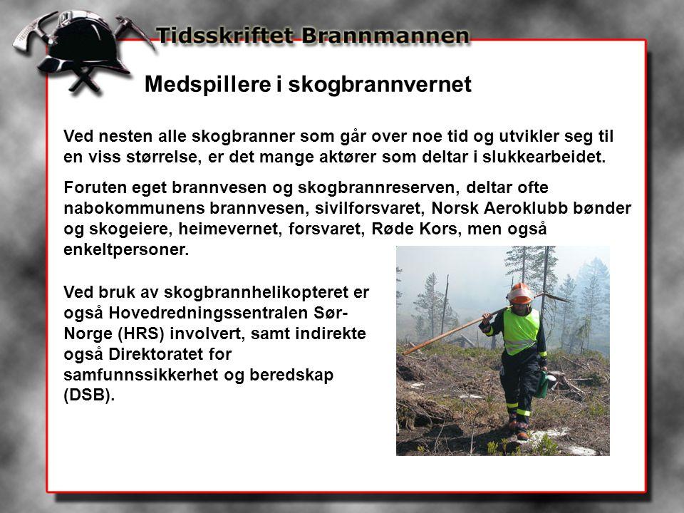 Medspillere i skogbrannvernet