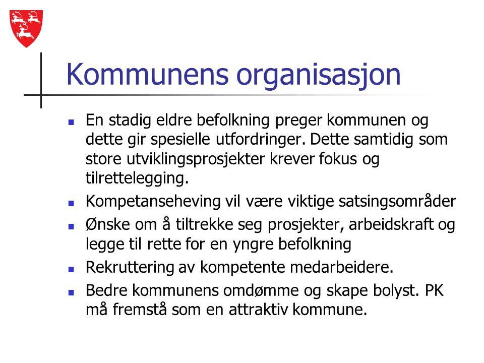 Kommunens organisasjon