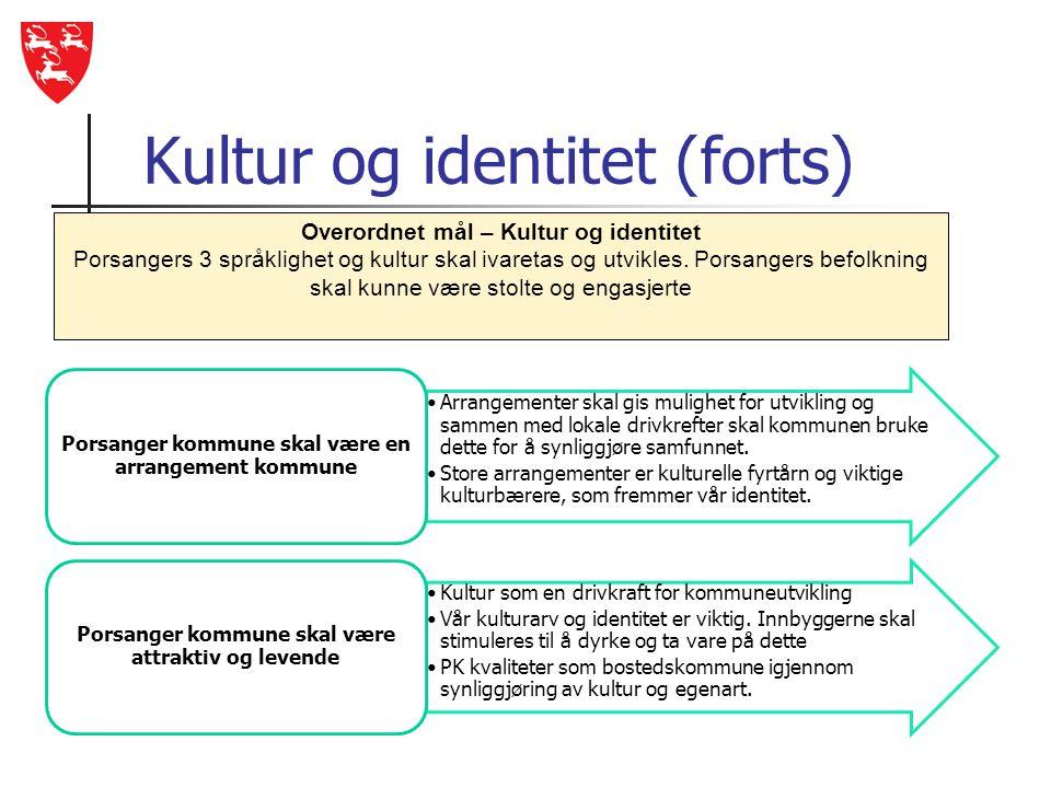Kultur og identitet (forts)