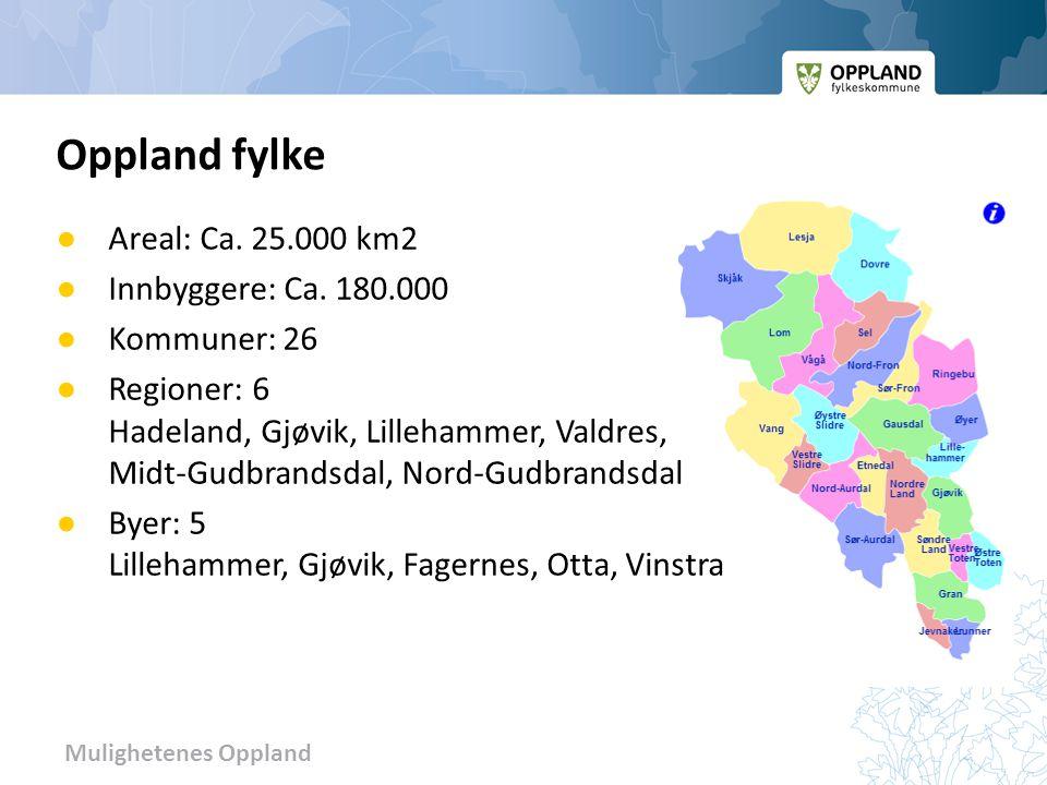 Oppland fylke Areal: Ca. 25.000 km2 Innbyggere: Ca. 180.000