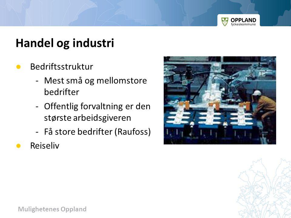 Handel og industri Bedriftsstruktur