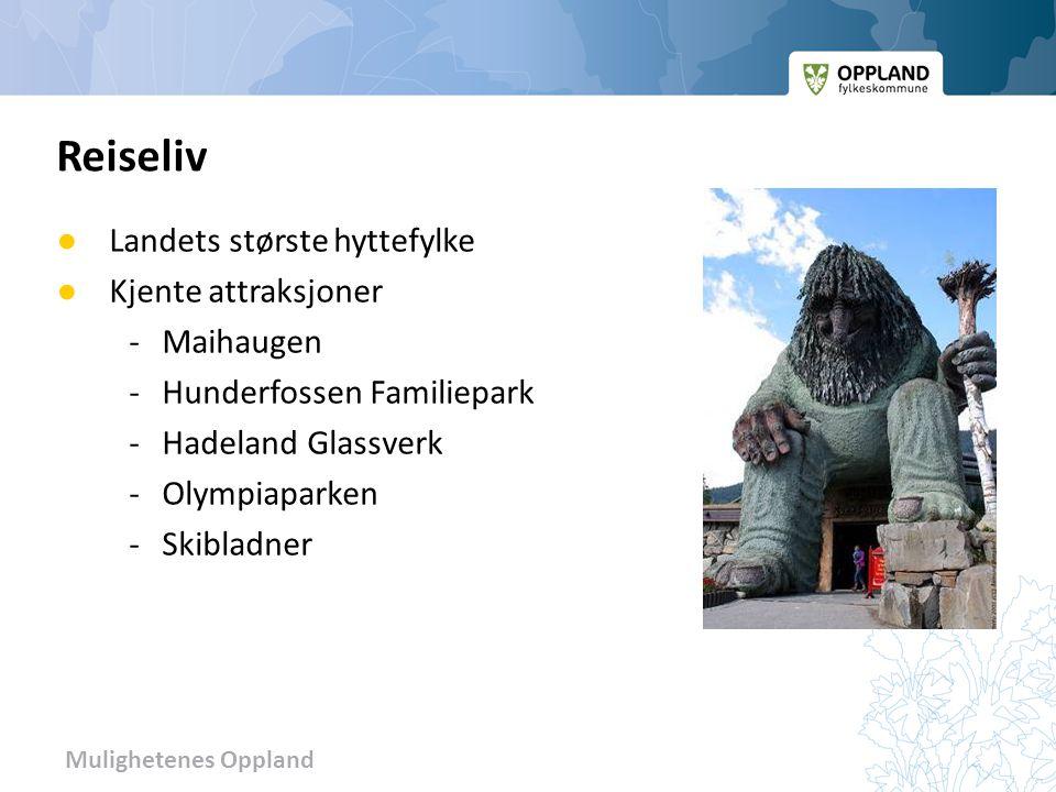 Reiseliv Landets største hyttefylke Kjente attraksjoner - Maihaugen