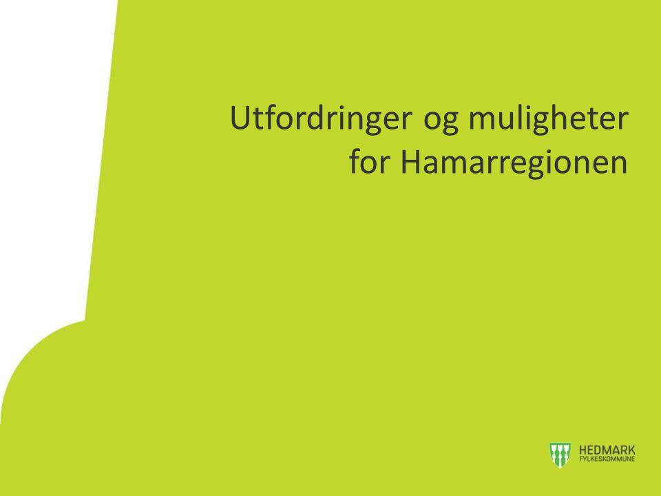 Utfordringer og muligheter for Hamarregionen