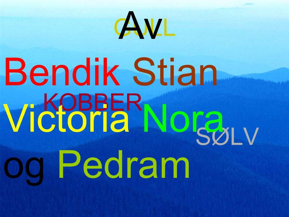 Bendik Stian Victoria Nora og Pedram