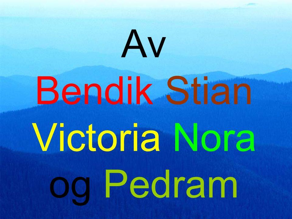 Av Bendik Stian Victoria Nora og Pedram