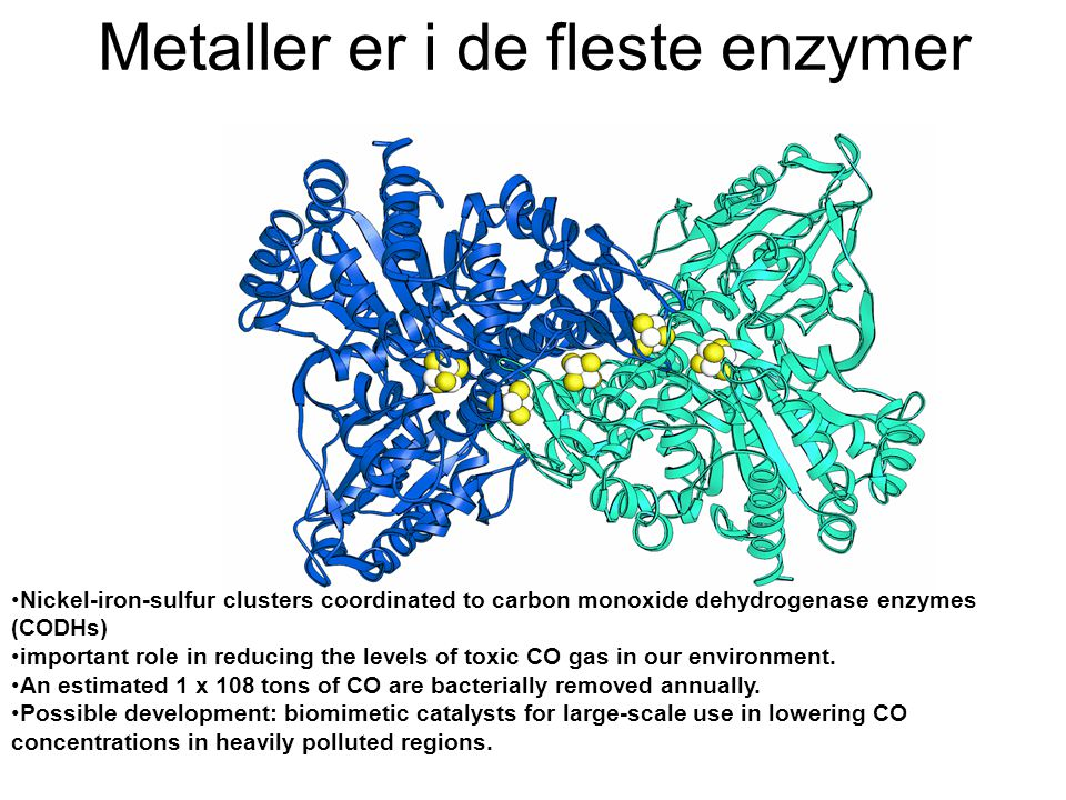 Metaller er i de fleste enzymer