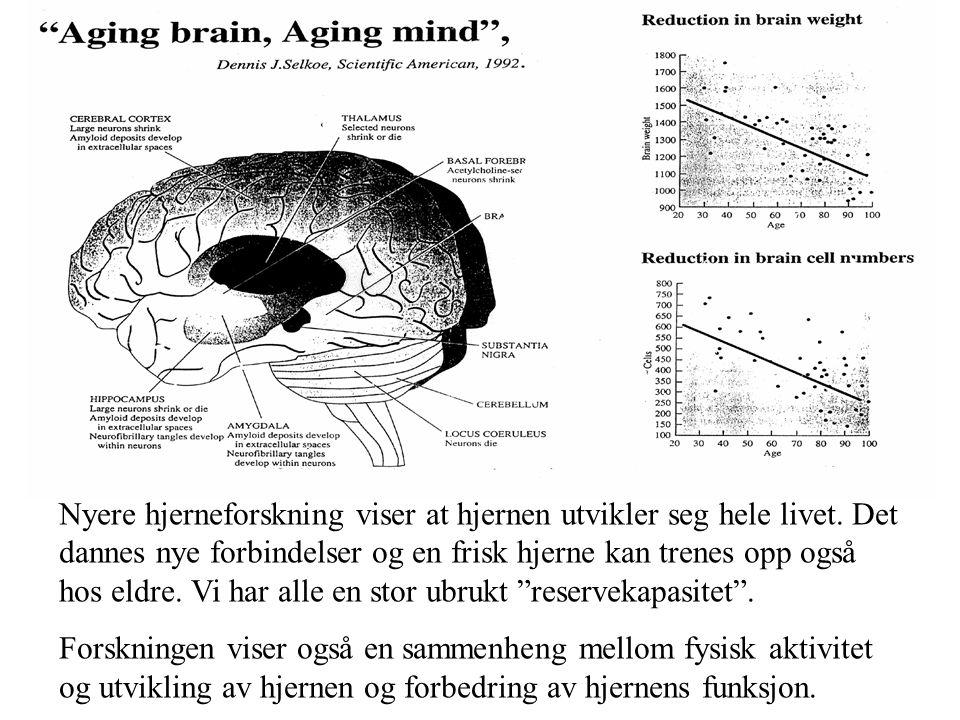 Nyere hjerneforskning viser at hjernen utvikler seg hele livet