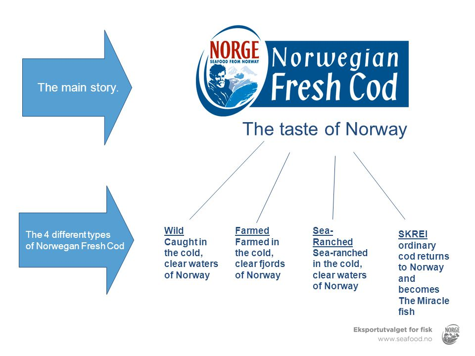 The taste of Norway The main story. The 4 different types