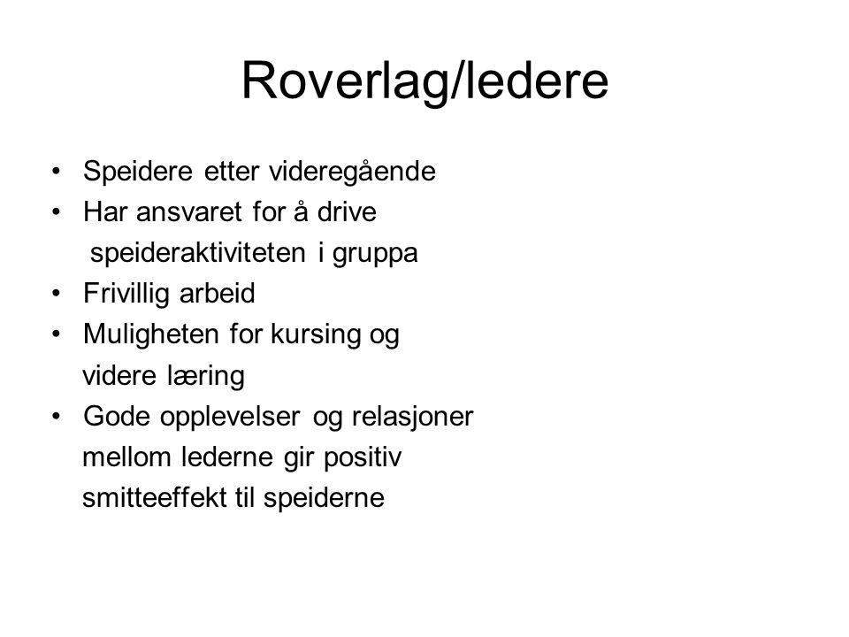 Roverlag/ledere Speidere etter videregående Har ansvaret for å drive