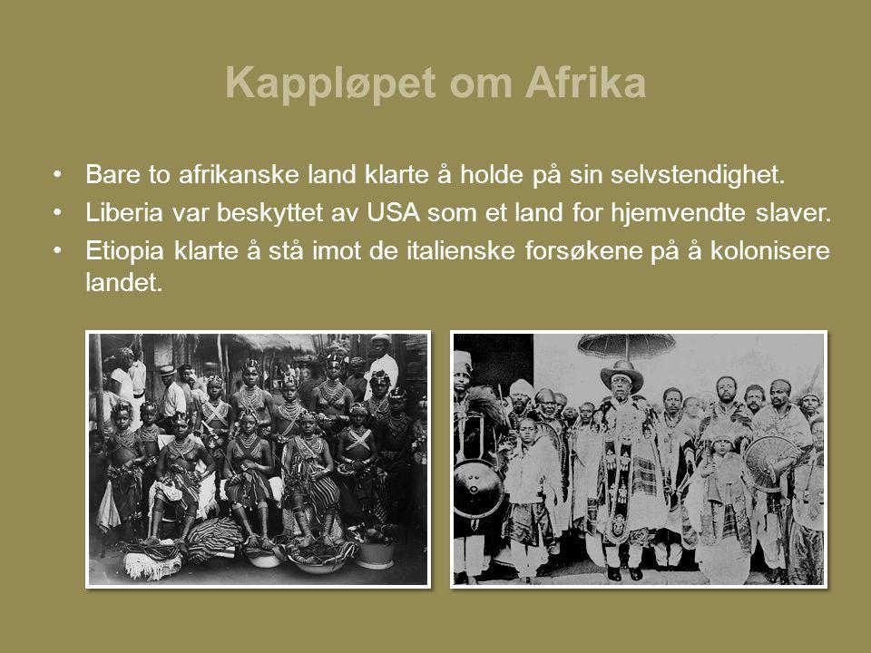 Kappløpet om Afrika Bare to afrikanske land klarte å holde på sin selvstendighet. Liberia var beskyttet av USA som et land for hjemvendte slaver.