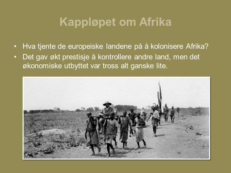 Kappløpet om Afrika Hva tjente de europeiske landene på å kolonisere Afrika