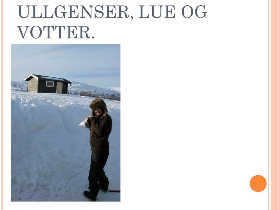 ULLGENSER, LUE OG VOTTER.