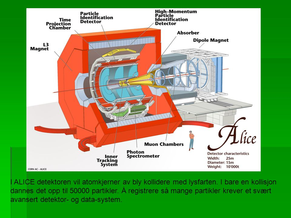 I ALICE detektoren vil atomkjerner av bly kollidere med lysfarten