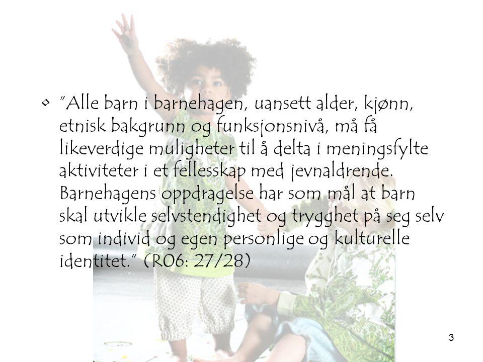 Alle barn i barnehagen, uansett alder, kjønn, etnisk bakgrunn og funksjonsnivå, må få likeverdige muligheter til å delta i meningsfylte aktiviteter i et fellesskap med jevnaldrende.