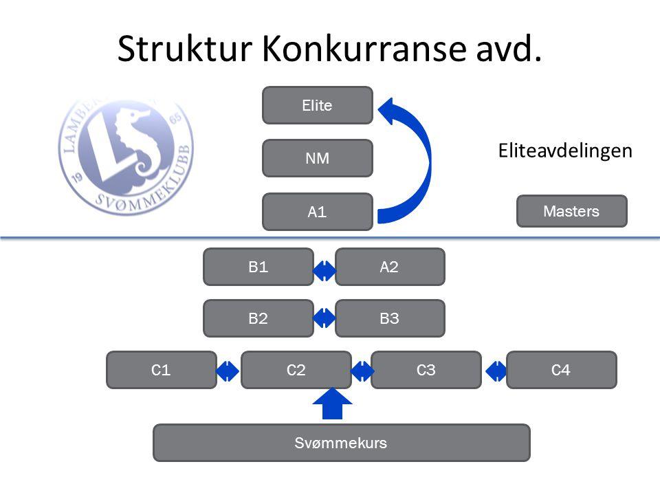 Struktur Konkurranse avd.