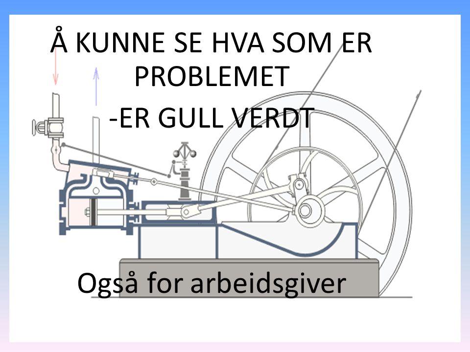 Å KUNNE SE HVA SOM ER PROBLEMET -ER GULL VERDT Også for arbeidsgiver