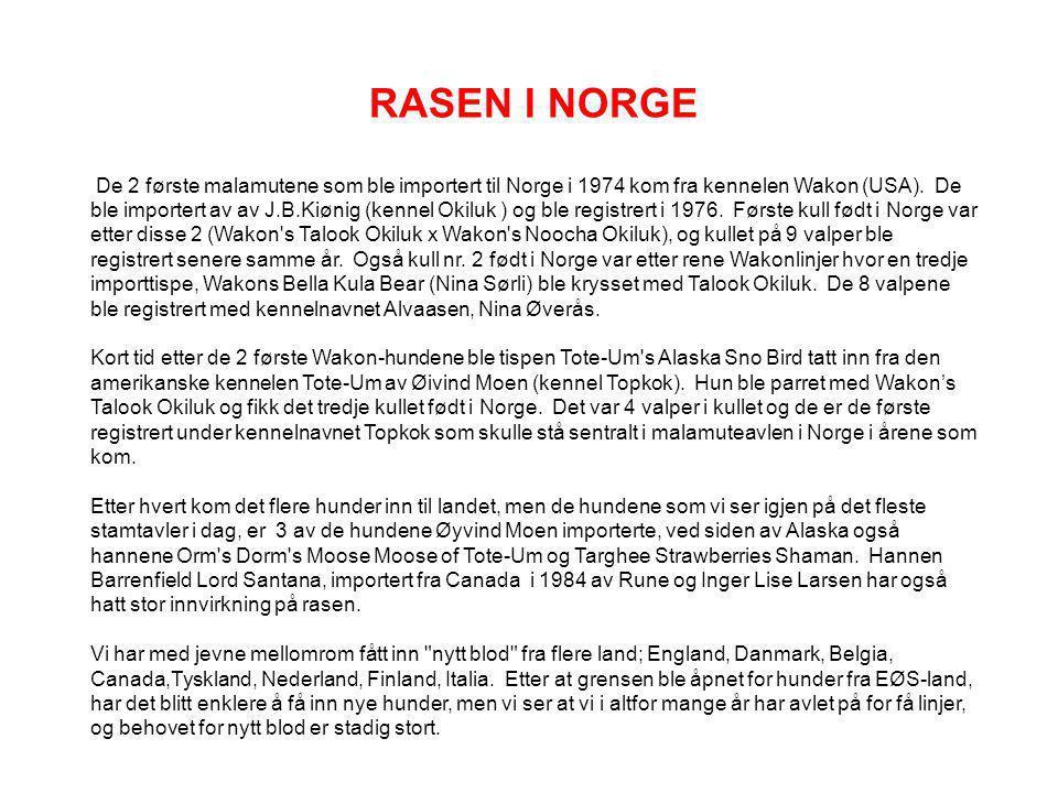 RASEN I NORGE
