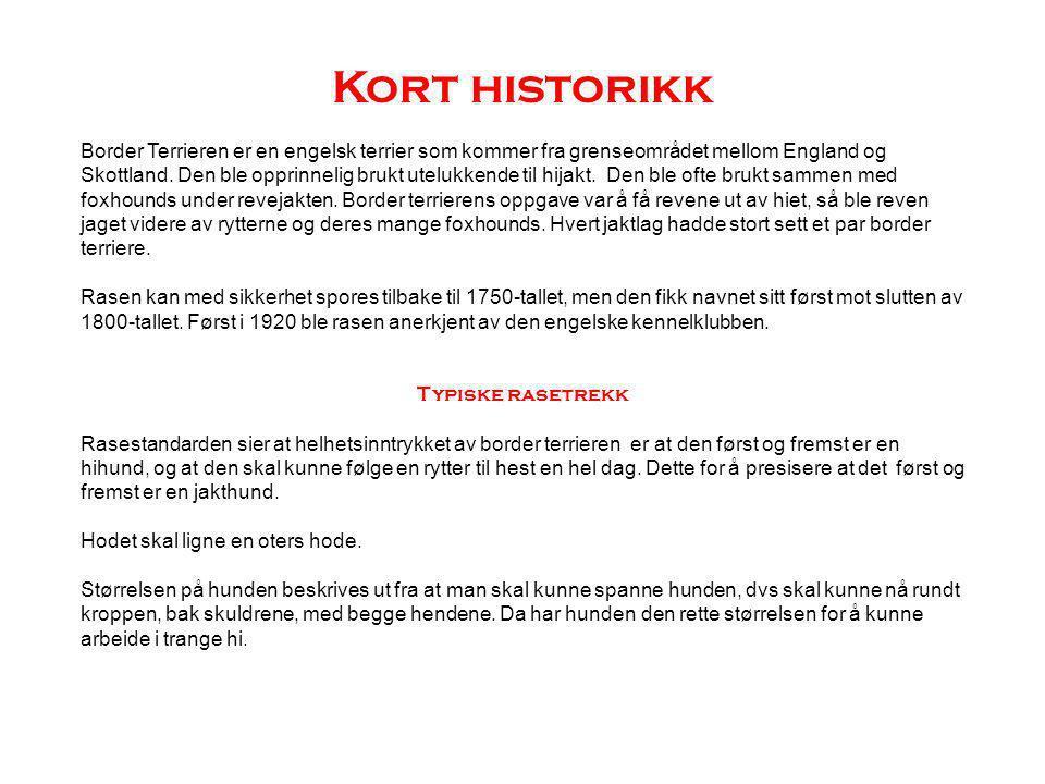 Kort historikk