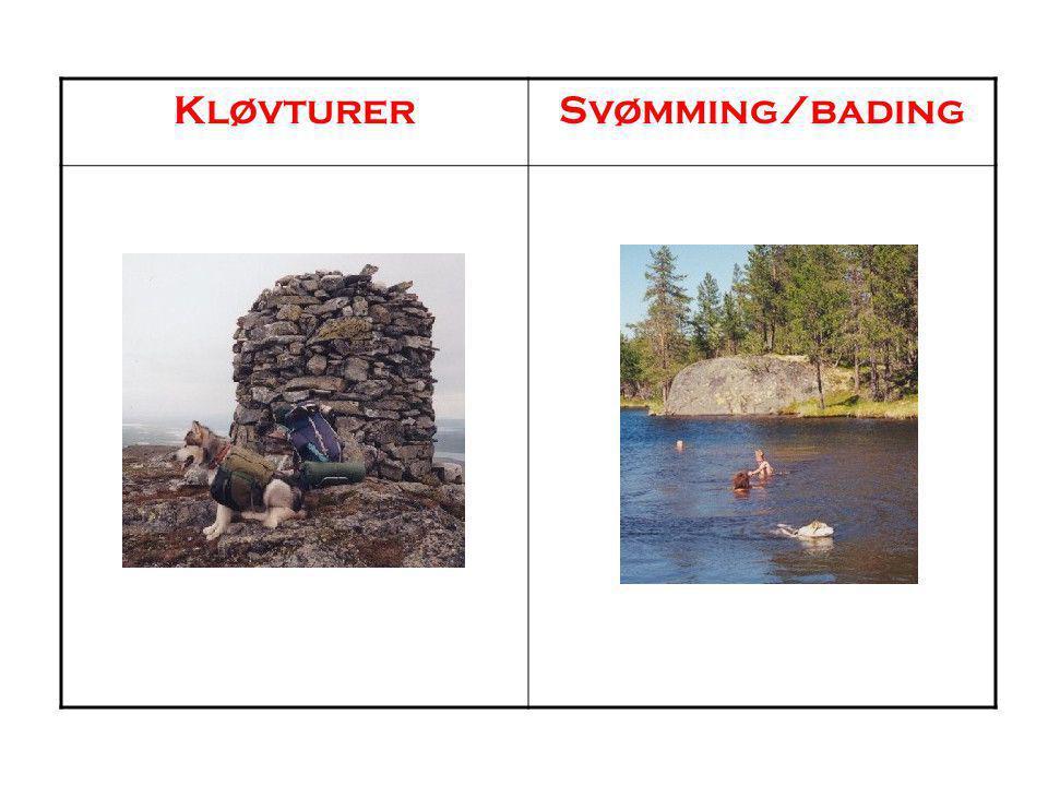 Kløvturer Svømming/bading