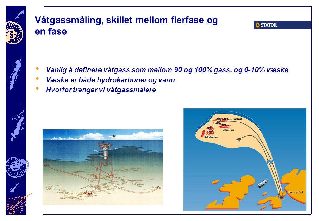 Våtgassmåling, skillet mellom flerfase og en fase