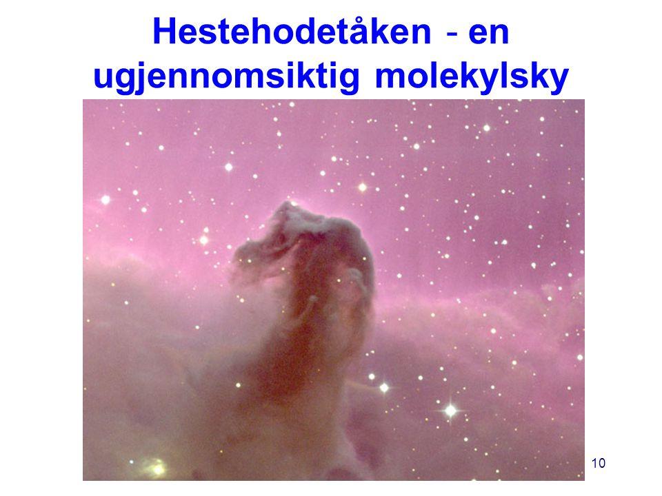 Hestehodetåken - en ugjennomsiktig molekylsky