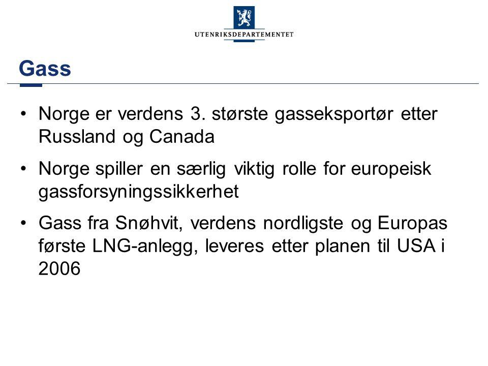 Gass Norge er verdens 3. største gasseksportør etter Russland og Canada. Norge spiller en særlig viktig rolle for europeisk gassforsyningssikkerhet.