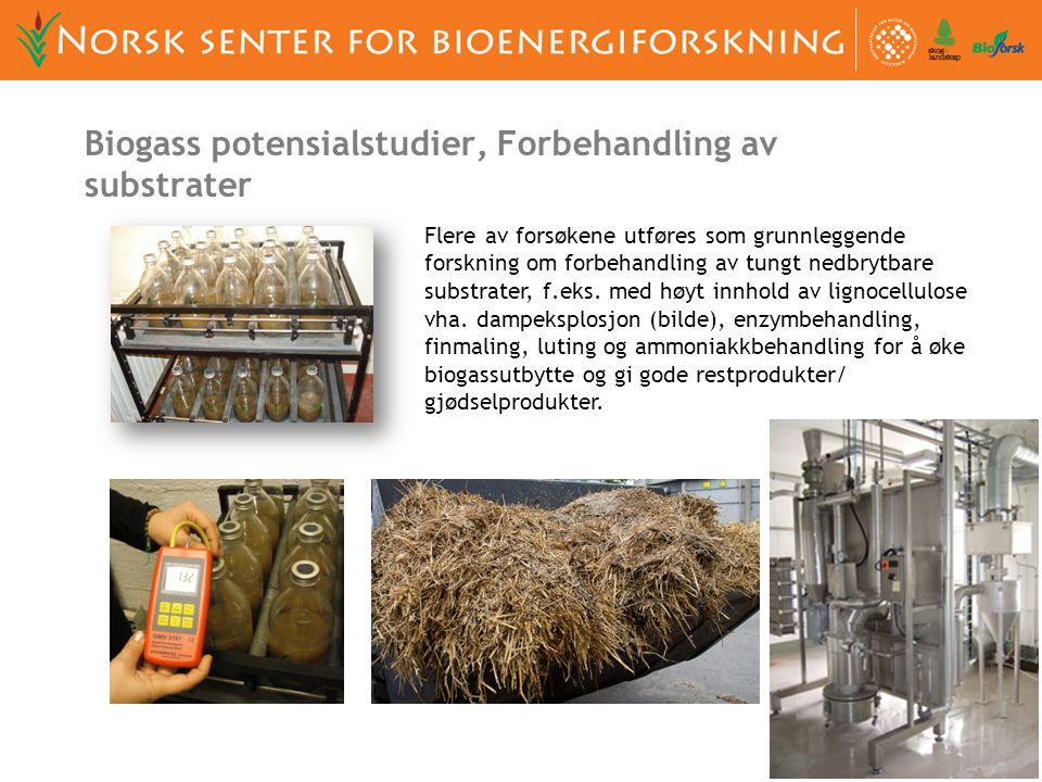 Biogass potensialstudier, Forbehandling av substrater