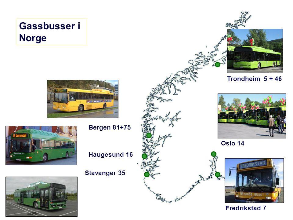 Gassbusser i Norge Trondheim 5 + 46 Bergen 81+75 Oslo 14 Haugesund 16