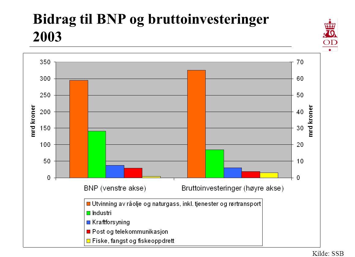 Bidrag til BNP og bruttoinvesteringer 2003