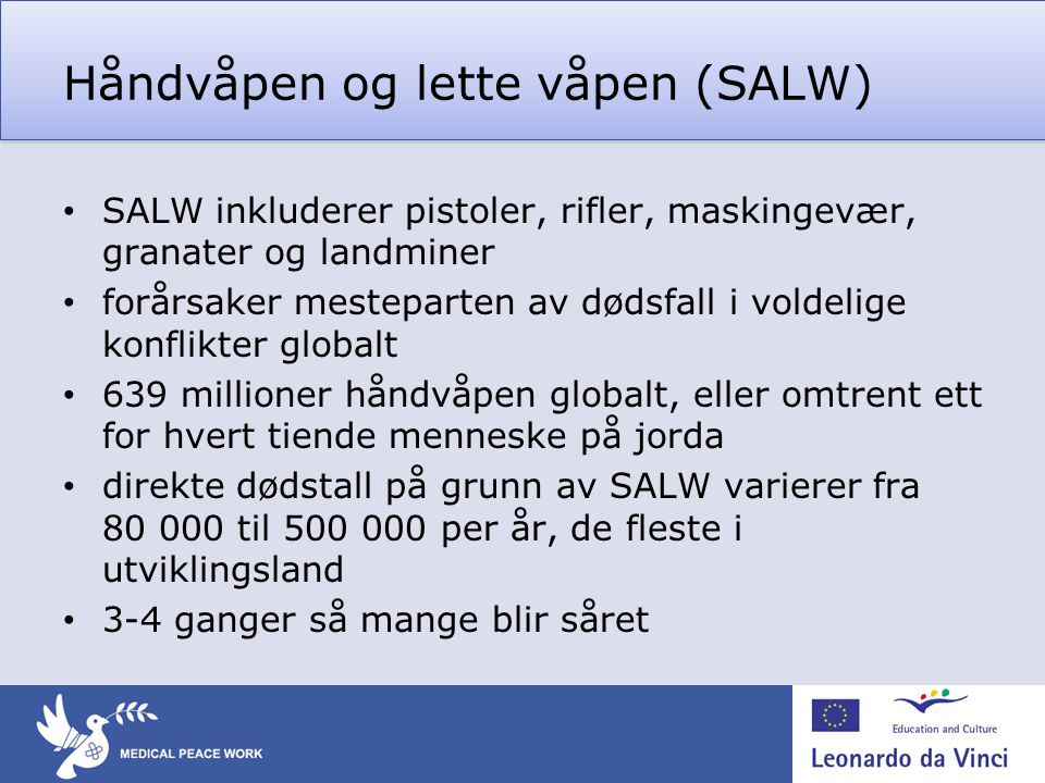 Håndvåpen og lette våpen (SALW)