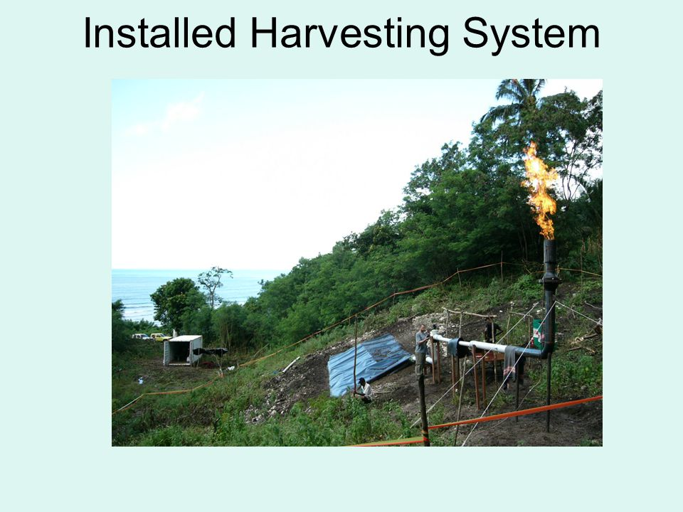 Installed Harvesting System