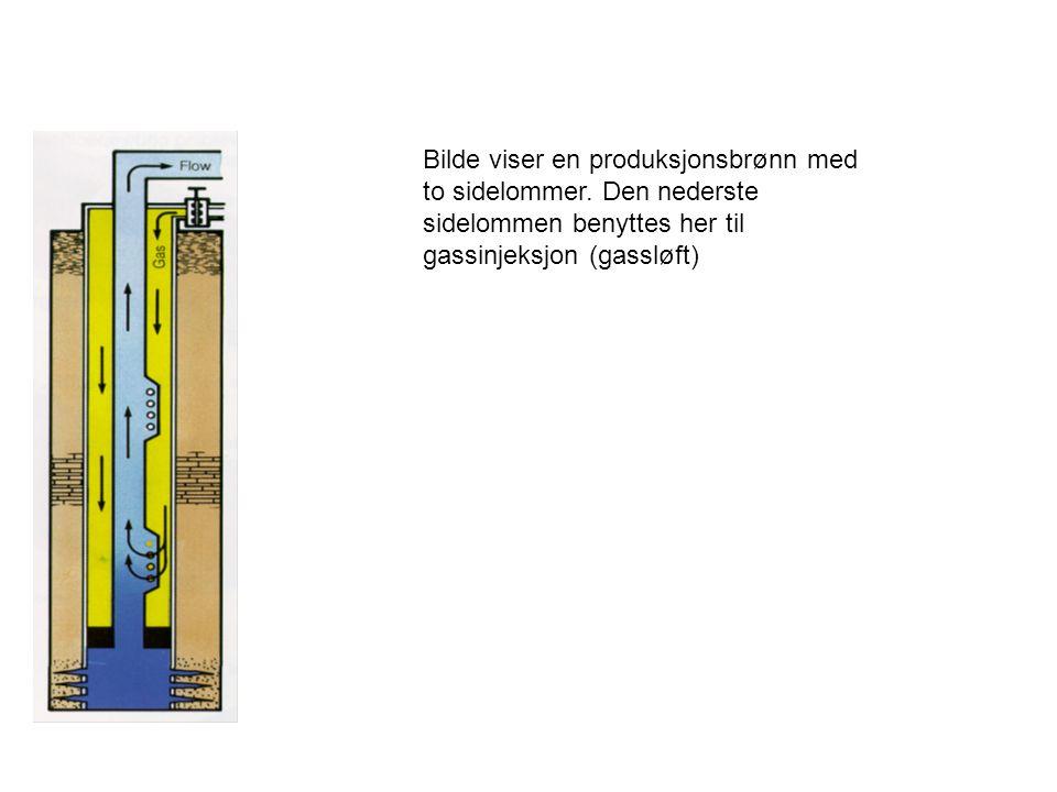 Bilde viser en produksjonsbrønn med to sidelommer