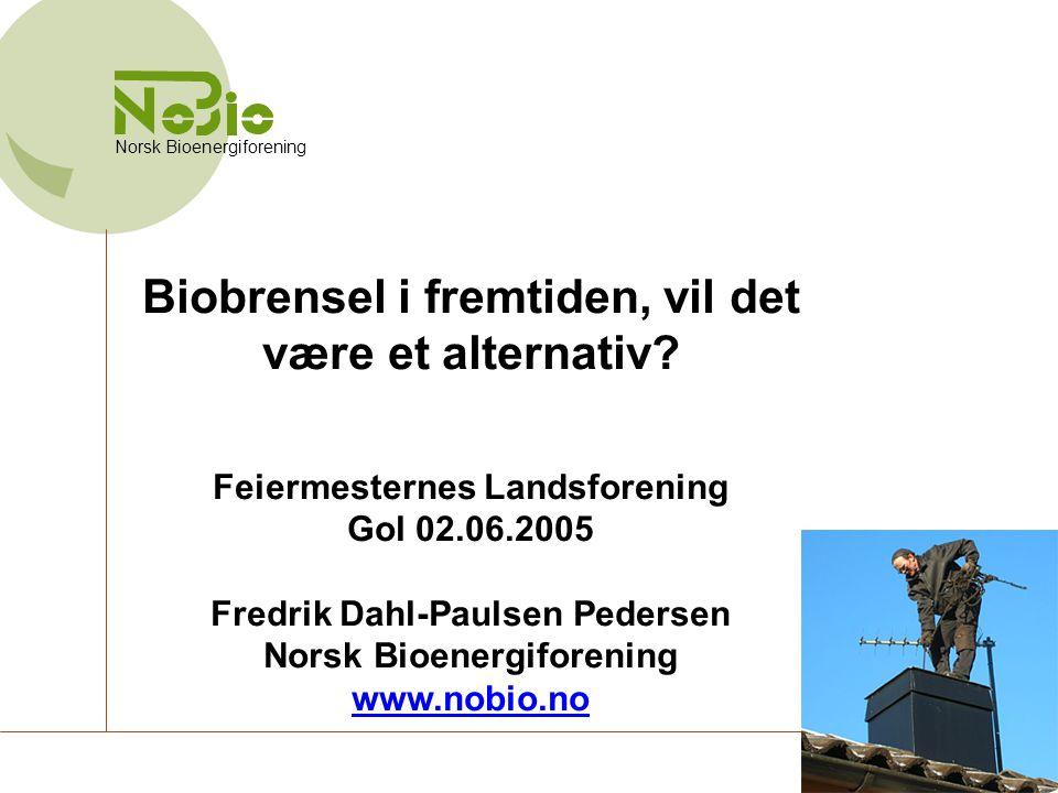 Biobrensel i fremtiden, vil det være et alternativ