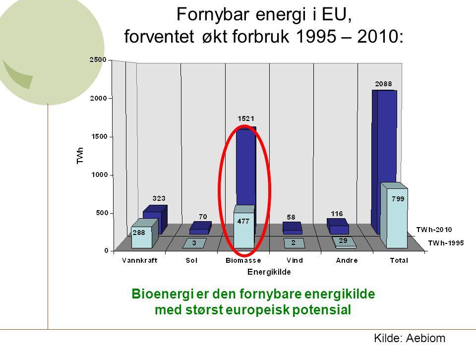 Bioenergi er den fornybare energikilde med størst europeisk potensial