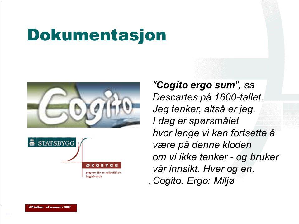 Dokumentasjon Cogito ergo sum , sa Descartes på 1600-tallet. Jeg tenker, altså er jeg.