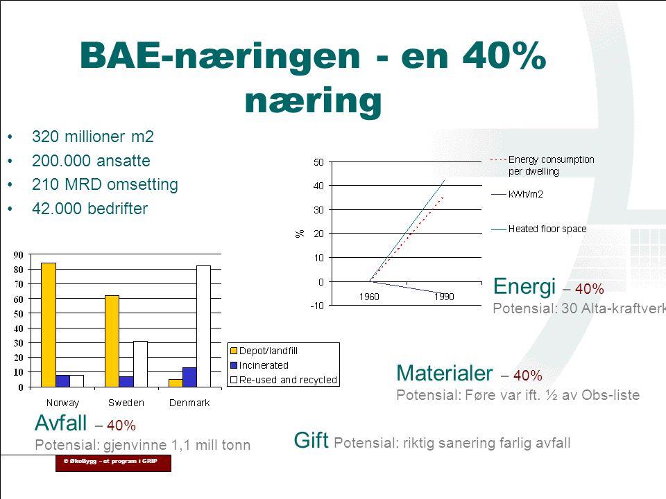 BAE-næringen - en 40% næring