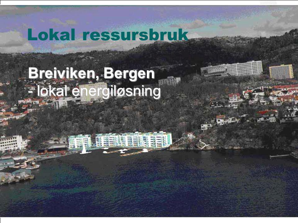 Lokal ressursbruk Breiviken, Bergen - lokal energiløsning