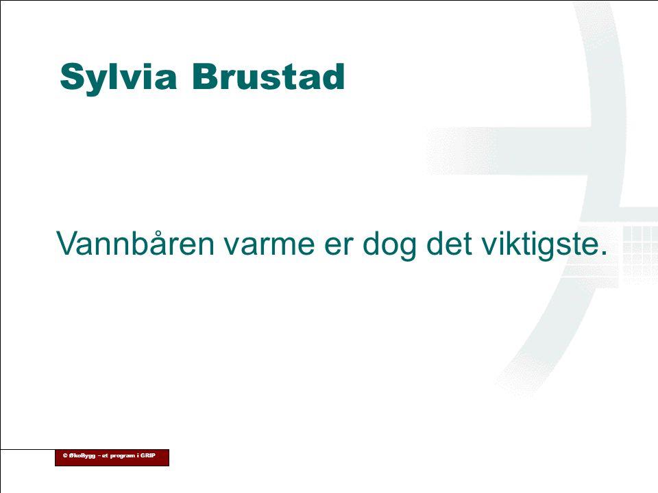Sylvia Brustad Vannbåren varme er dog det viktigste.