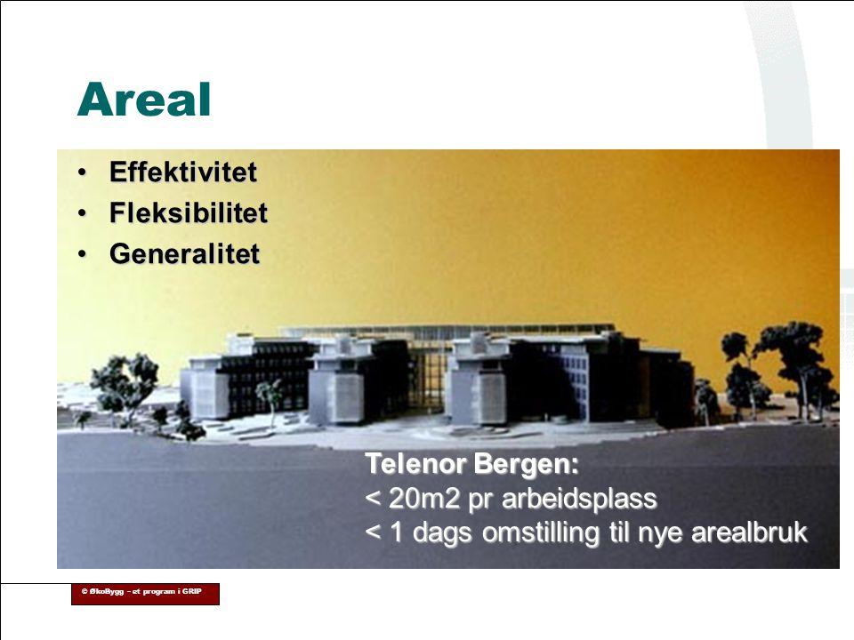 Areal Effektivitet Fleksibilitet Generalitet Telenor Bergen: