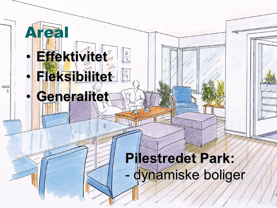 Areal Effektivitet Fleksibilitet Generalitet Pilestredet Park: