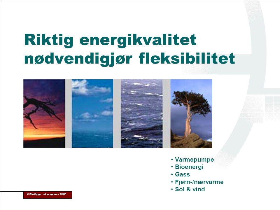 Riktig energikvalitet nødvendigjør fleksibilitet