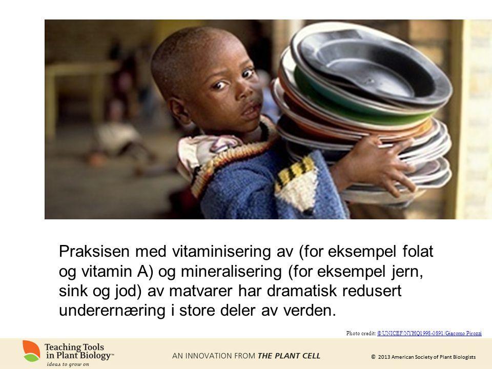 Praksisen med vitaminisering av (for eksempel folat og vitamin A) og mineralisering (for eksempel jern, sink og jod) av matvarer har dramatisk redusert underernæring i store deler av verden.