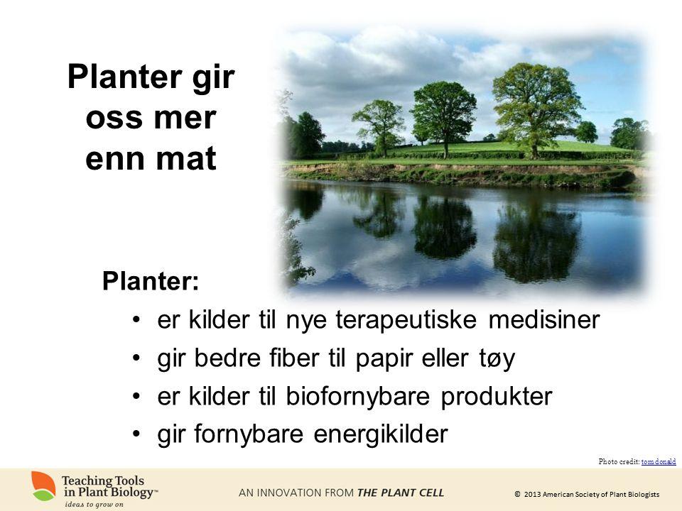 Planter gir oss mer enn mat