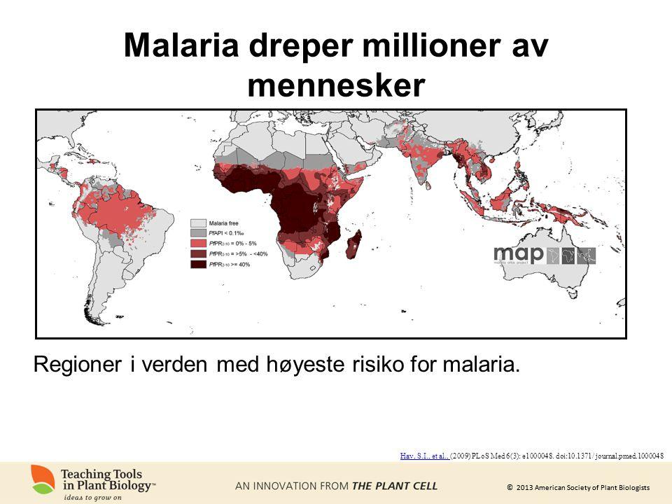 Malaria dreper millioner av mennesker